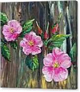 Wild Roses 09 Canvas Print