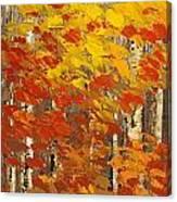 Wild Wild Woods Canvas Print