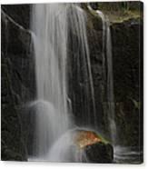 Wildcat Falls Yosemite National Park Canvas Print