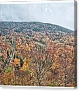 Wildcat Mountain Gold Canvas Print