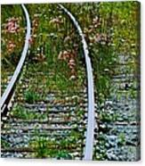 Wildflower Railroad Canvas Print