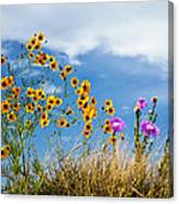 Wildflower Weed Canvas Print