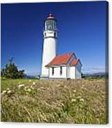 Wildflowers And Cape Blanco Lighthouse Canvas Print