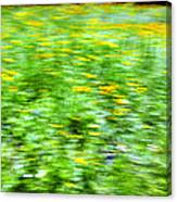 Wildflowers And Wind 2 Canvas Print