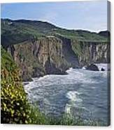 Wildflowers At The Coast, County Canvas Print