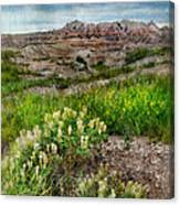 Wildflowers In Badlands Canvas Print