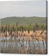 Wildlife Refuge Canvas Print
