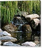 Willow Falls Canvas Print