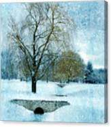 Willow Trees By Stream In Winter Canvas Print