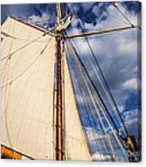 Wind In My Sail Canvas Print