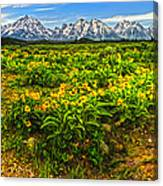 Wind River Range In West Central Wyoming - 03 Canvas Print