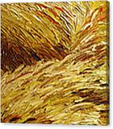 Windblown Grass Canvas Print