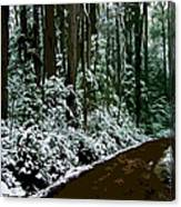 Winding Forest Trail In Winter Snow Canvas Print