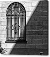 Window And Shadow On A Wall With Bike Canvas Print