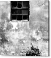 Window And Sidewalk Bw Canvas Print