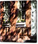 Window Boxes Greenwich Village Canvas Print