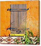 Window To Africa Canvas Print