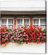 Windows With Red Flowers Canvas Print