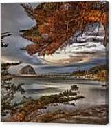 Windy Cove Canvas Print
