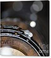Wine Barrels In Oak Canvas Print