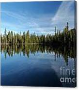 Wings In The Lake Canvas Print
