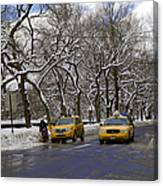 Winter - 2011 Canvas Print