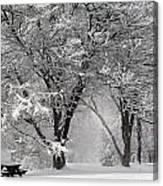 Winter 0002 Canvas Print