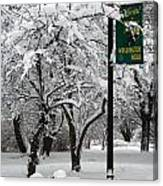Winter 0003 Canvas Print