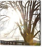 Winter At Greenrise Canvas Print