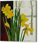 Winter Daffodils Canvas Print
