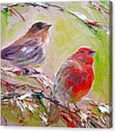 Winter Finches Canvas Print