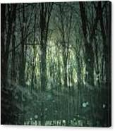 Winter Forest At Twilight Canvas Print