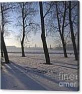 winter forest Peterburg Canvas Print