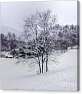Winter Landscape 6 Canvas Print