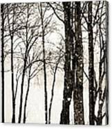 Winter Landscape On Snowy Day Canvas Print