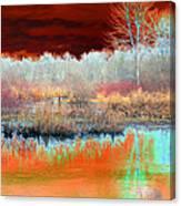Winter Marsh Canvas Print