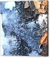 Winter Natural Art Canvas Print