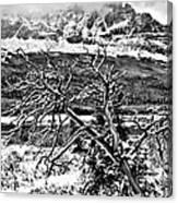 Winter On The Horizon Canvas Print
