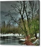 Winter On The Nicomen Slough Canvas Print