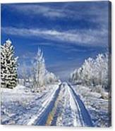 Winter Rural Road Canvas Print