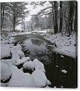 Winter Scene Of Creek With Snow-covered Canvas Print