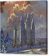 Winter Solace Canvas Print