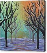 Winter Solitude 11 Canvas Print