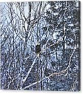 Winter Storm Alert Canvas Print