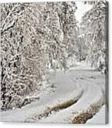 Winter Tracks Canvas Print
