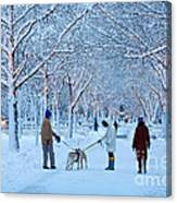 Winter Twilight Walk Canvas Print