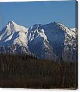 Winter View Canvas Print
