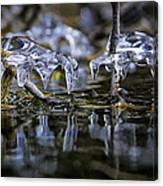 Winter Water Canvas Print