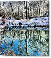 Winter Wonder Canvas Print