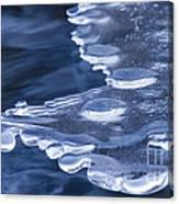 Winters Grip Canvas Print